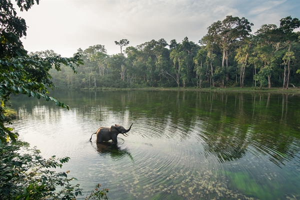 STUDY: Scientists Say World's Protected Areas Need a Re-Boot