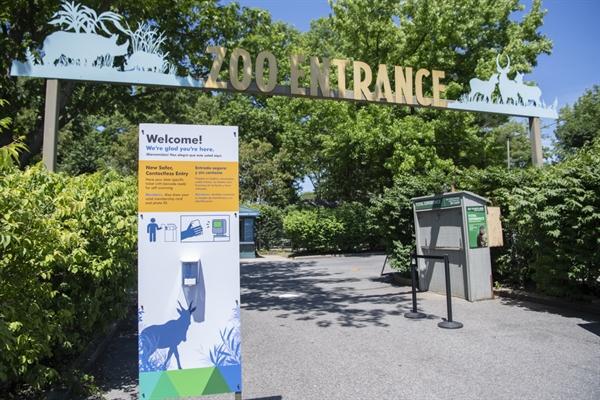 Welcome Back To The Zoo Newsroom