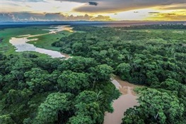 Major Arcadia Fund Grant to WCS Advances Global Conservation of Nature Strongholds