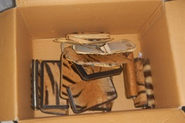 Major Illegal Tiger Skin Trader Arrested in Indonesia
