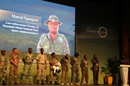 "Three WCS Rangers Win ""African Ranger Award"""