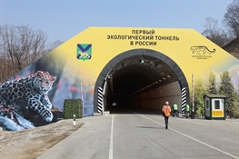 The following statement was released today by Dale Miquelle, Director of the WCS Russia Program on the opening of the first wildlife tunnel in Russia