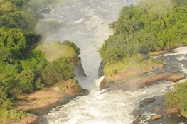 WCS Speaks Out Against Proposed Dam in Murchison Falls National Park