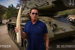TERMINATOR TERMINATES TUSK ON VIDEO