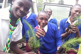 WCS Partners with Ecosia to Plant 900,000 Trees in Tanzania