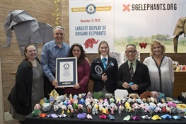 WCS's 96 Elephants Campaign SMASHES the GUINNESS WORLD RECORDS™Title for Largest Display of Origami Elephants