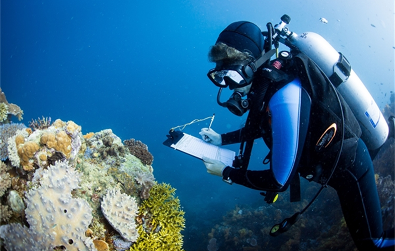 A marine scientist gathering data on coral reefs in the waters of Fiji. CREDIT: E. Darling/WCS.