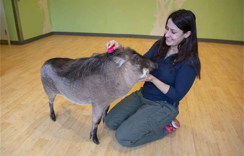 Julie Larsen Maher_7404_Warthog Peaches with Kira Babuska_BZ_01 11 19.JPG