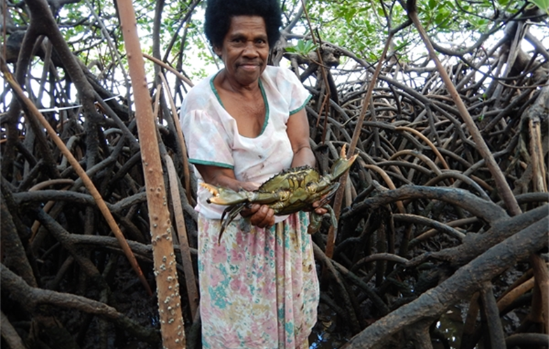 A local mud crab fisher from Bua Province, Fiji. CREDIT: Yashika Nand-WCS