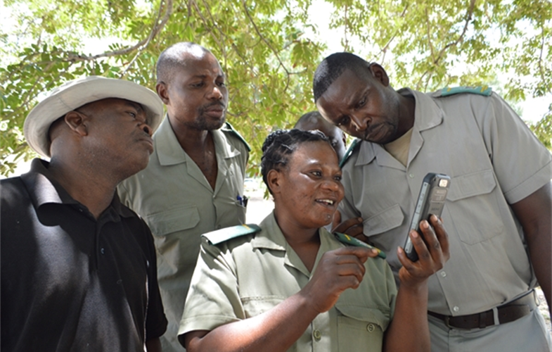 SMART Mobile will allow conservation practitioners to easily, accurately, and quickly collect and upload data for analysis and action. CREDIT Drew Cronin/NC Zoo