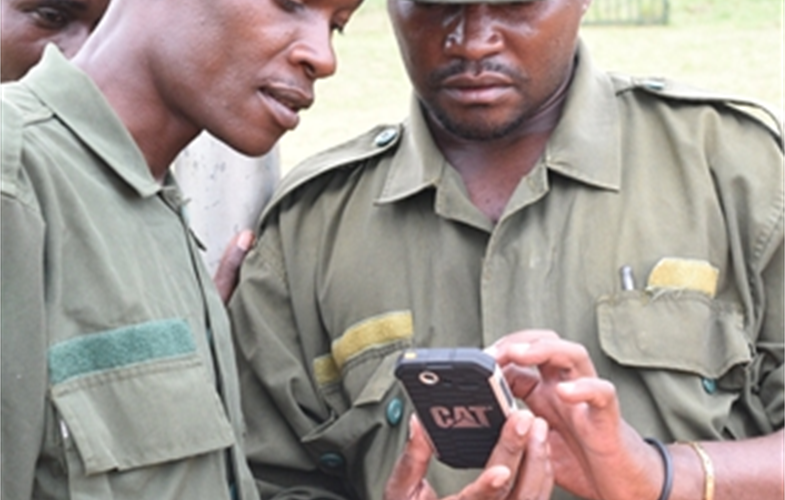 Rangers entering data on smart phone - A.Plumptre_WCS.JPG