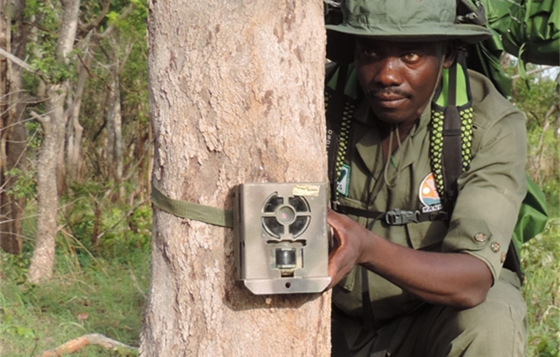 Suleiman Saidu is a Senior Game Guard Ranger at the Yankari Game Reserve in Nigeria