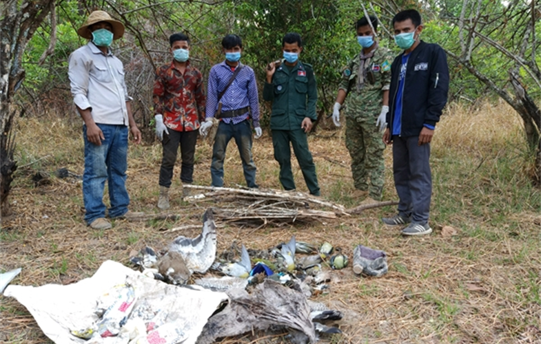 A mixture of dead birds and poison recovered from the site CREDIT: WCS
