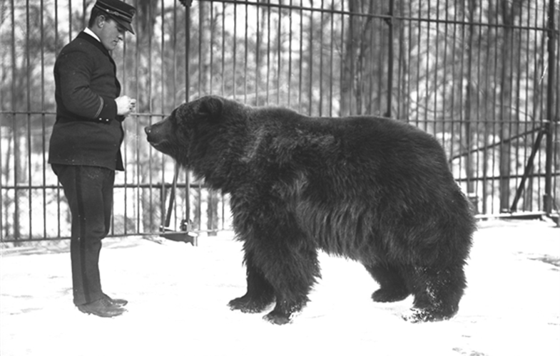 Wildlife Conservation Society_00493_Kodiak Bear and Keeper_BZ_12 18 05.JPG