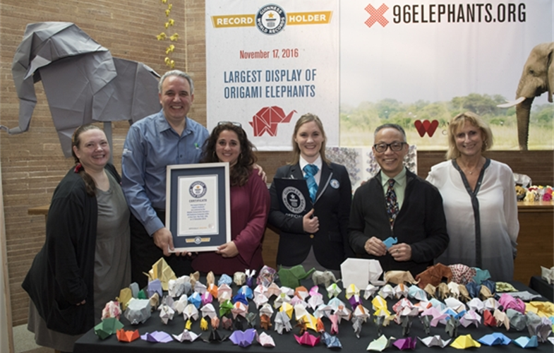 _Julie Larsen Maher_5806_Elephant Origami Guinness World Record_BZ_11 17 16.JPG