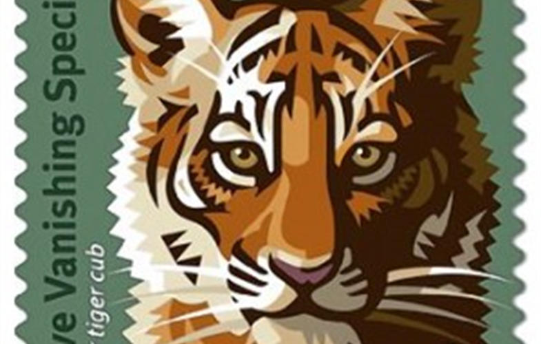 amur_tiger_stamp.1_330-300x300